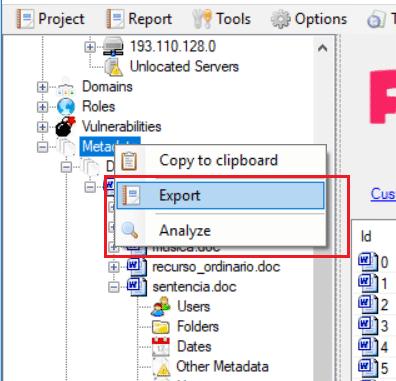 FOCA exportar información