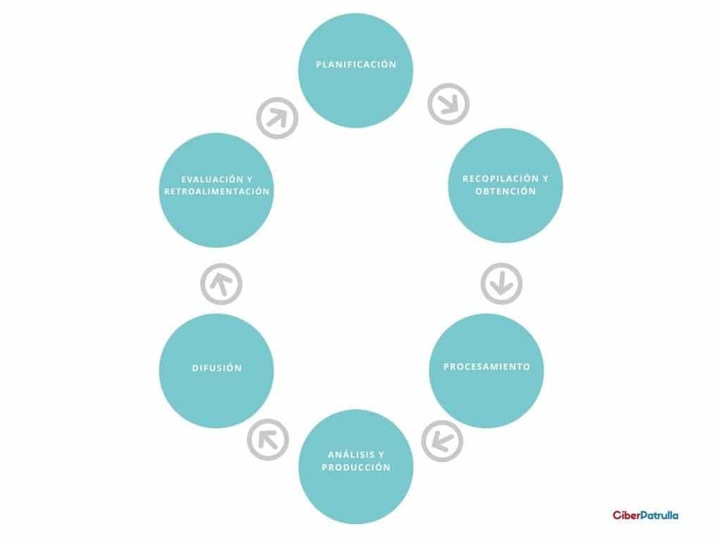 fases del ciclo de inteligencia