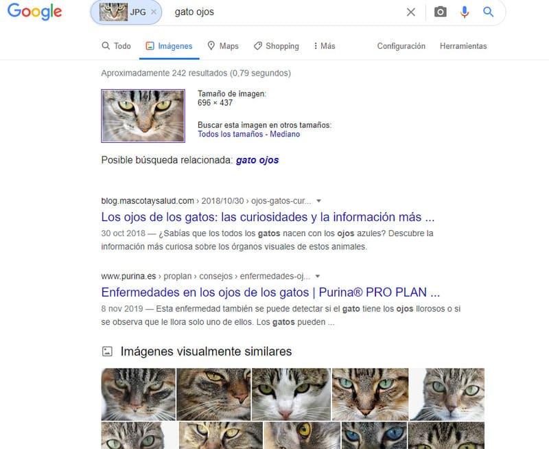 reveye reverse image search firefox