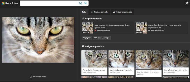 reveye-reverse-image-search